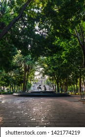 Coyoacán, Mexico City. Coyotes fountain, symbol of the place.