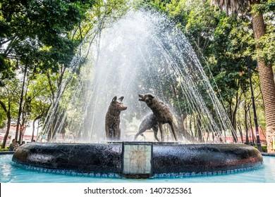 Mexico City, Mexico - October 26, 2018. Sculpture of coyotes in fountain in Coyoacan Quarter