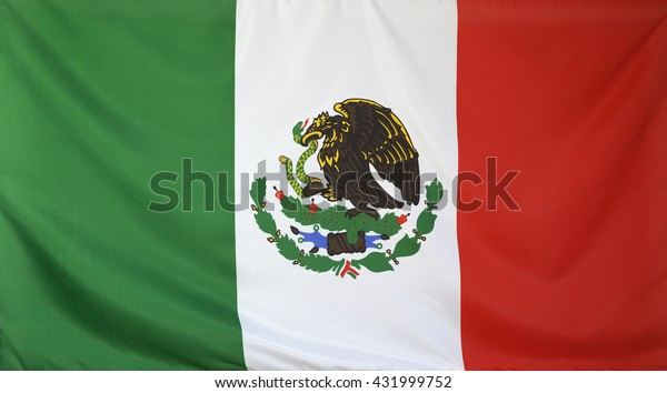 Mexico Flag real fabric seamless close up