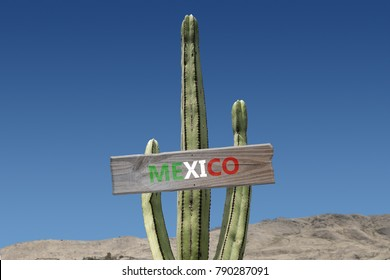 Mexico sign on cactus in desert