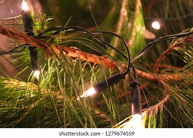 Mhlambanyatsi, Swaziland - December 24th 2018: Natural indoor Christmas pine tree decorated with Christmas lights and ornaments. Slightly edited with Adobe Photoshop CC.