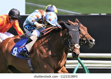 Mia Tesoro ridden by Stevie Donohoe wins the Listed Nottinghamshire Oaks Stakes worth £40,000 at Nottingham Races : Colwick Park, Nottingham, UK : 10 June 2018