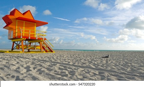 Miami Beach, Florida - Lifeguard Tower Seagull on Sandy Tropical Scene - Great Background for Titling