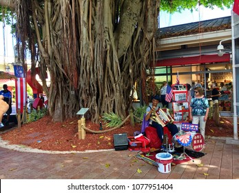 Miami beach, Florida, USA - July 17, 2016: Mangrove wood in front of Bayside entrance in Miami beach