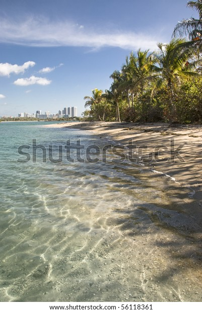 Miami Biscayne Bay island beach.