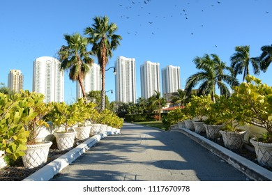 Miami, Florida - January, 3, 2018: Beautiful luxury real estate at Atlantic Isle near Collins Avenue at Sunny Isles Beach