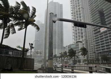 MIAMI - FLORIDA, OCTOBER 26: Wind blow trees in Downtown Miami during Hurricane Sandy cross the city on october 26 2012 in Miami, Florida, USA.