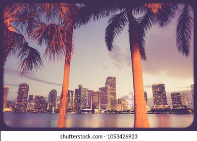 Miami Florida skyline at night with palm trees, lit buildings, bay and retro vintage film filter effect