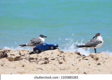 Miami, Florida / USA - April 14 2018:  Audi TT Replica Toy Car on the Beach in the Sand Abstract