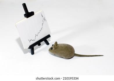 Mice reading the exchange index