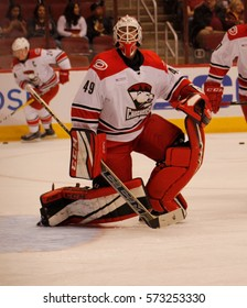 Michael Leighton goalie for the Charlette Checkers at Gila River Arena in Glendale Arizona USA February 3,2017.
