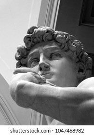 Michelangelo's David - Face Expressions