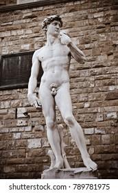 Michelangelo's David statue in the Piazza della Signoria, Florence