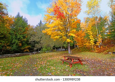 Michigan's Upper Peninsula has beautiful fall colors and numerous recreational areas to be enjoyed