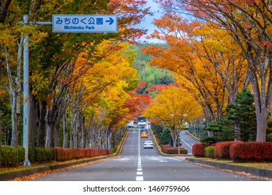 Michinoku park, Sendai, Japan - October 25, 2017 : Peak period of autumn season for this wonderful road  in Japan. There are beautiful fall foliage view in Tohoku.