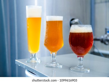 Micro brewery concept, closeup of three kinds of beer in production, IPA, red IPA and wheat beer