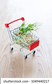 Micro greens in shopping cart on wooden background. Different types of microgreens for sale. Healthy eating concept of fresh garden produce organically grown, symbol of health. Vitamins from nature.
