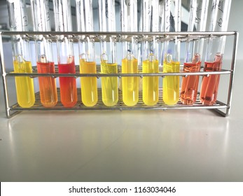 Microbiology test laboratory