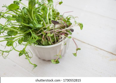 microgreen in a white vase. Sprouts of vegetables sprouted from the seeds of plants. Microgreen on a white background. copyspace