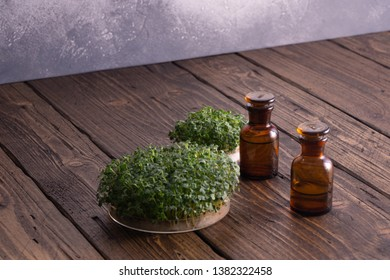 Microgreens in round container and small glass vials on wooden table against bright textured background. Raw sprouts, microgreens, healthy eating concept. Science, biology.