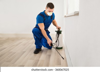 Mid adult male worker spraying pesticide on wall at home