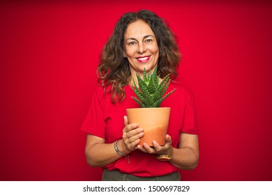 Middle age senior woman holding green cactus over red isolated background with a happy face standing and smiling with a confident smile showing teeth