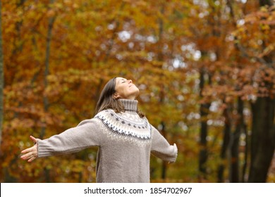 Middle age woman stretching arms breathing fresh air in a forest in autumn