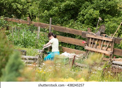 middle age woman working at the raised vegetable beds in the countryside backyard garden