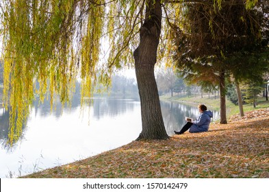 The middle aged caucasian woman is reading a magazine under the willow tree.