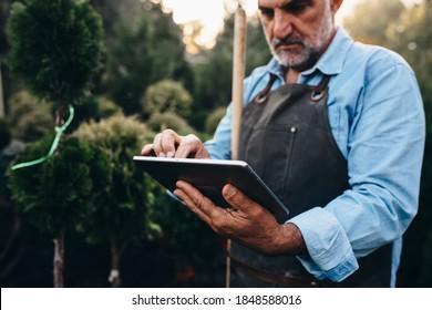 middle aged gardener working with digital tablet in tree nursery