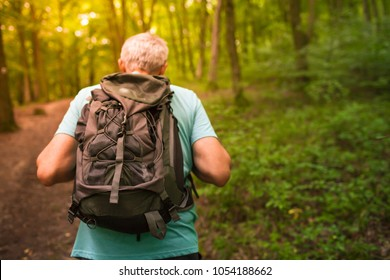Middle aged man hiking in the forest. Outdoor adventures.