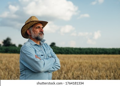 middle aged man posing in wheat field