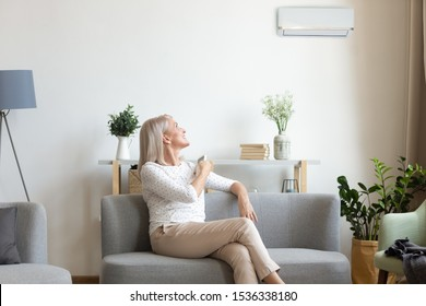 Middle aged old happy woman holding remote climate control switch on air conditioner on wall sit on sofa in living room enjoy cool fresh air condition system at convenient modern home relax on couch