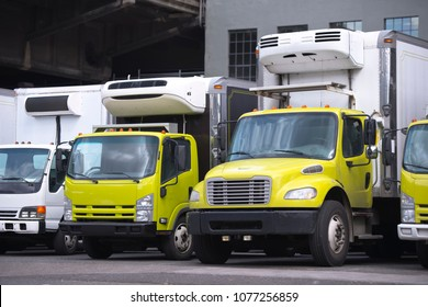 Middle class yellow and white semi trucks different makes and models with refrigerator unit on box trailers for moving and delivery services standing in row in warehouse dock waiting for customers