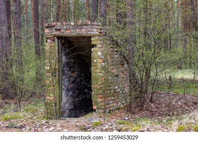 In the middle of the forest an old brick construction covered by mold is an entrance to the underworld, a stairway that leads down to a mysterious unknown place, maybe a basement or a hidden bunker...