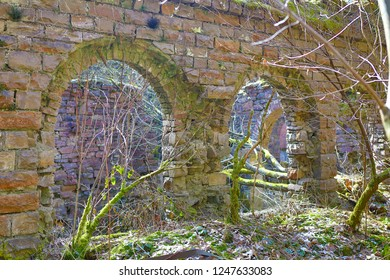 In the middle of the forest stands the old, long-forgotten factory ruins