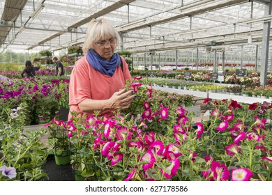 Middle-aged woman chooses flowers at the garden center