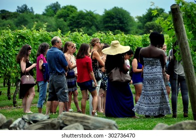 Middletown, Rhode Island - July 18, 2015:  Visitors on a tour at the renowned Newport Winery vineyards learn about viticulture