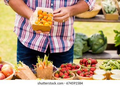 Midsection of man selling tomatoes while standing at farm