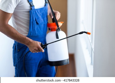 Midsection of pest control worker with sprayer standing at home