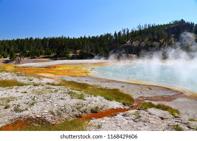 Midway Geyser Basin in Yellowstone National Park Wyoming, USA