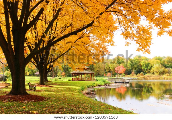 Midwest Nature Background Park View Beautiful Nature Stock Image 1200591163