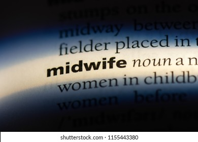 midwife word in a dictionary. midwife concept.