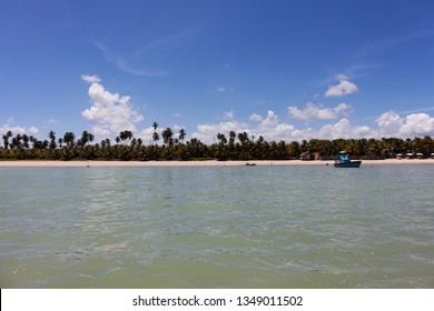São Miguel dos Milagres, Alagoas, Brazil. A beach called Toque (praia do toque). Fantastic landscape, great beach with clear water. Paradise beach, blue sky.