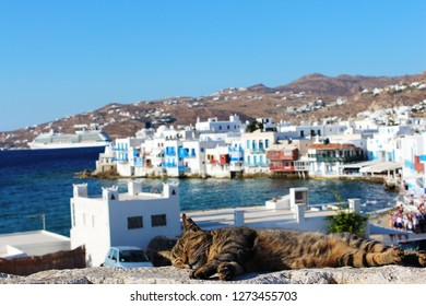 Mikonos -Greek Island