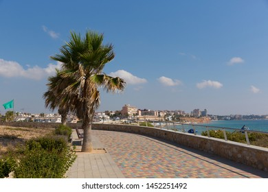 Mil Palmeras Costa Blanca Spain view from the paseo promenade to the beach and town with palm trees
