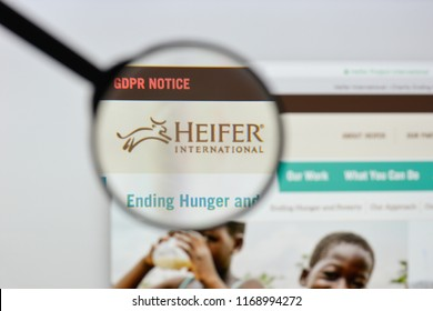 Milan, Italy - August 20, 2018: Heifer International website homepage. Heifer International logo visible.