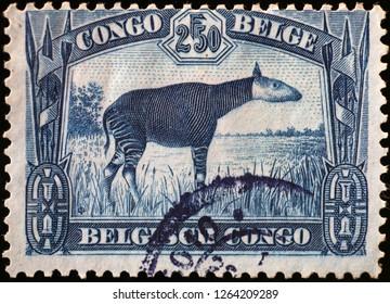 Milan, Italy – December 11, 2018: Okapi on vintage stamp of Belgian Congo