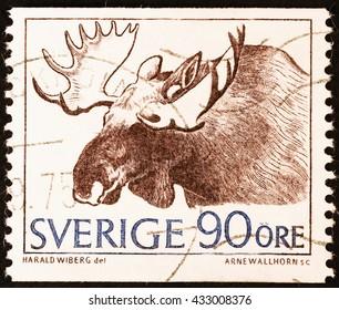 Moose Swedish Images Stock Photos Vectors