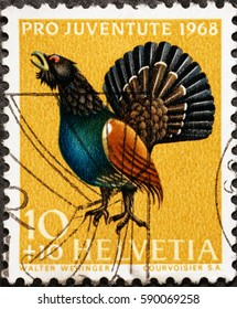Milan, Italy - January 30, 2017: Capercaillie on vintage swiss postage stamp